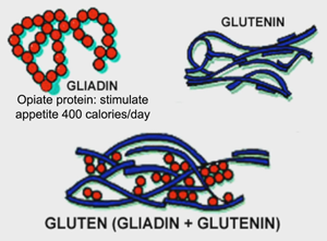 Dieta Cetogenica Integrada